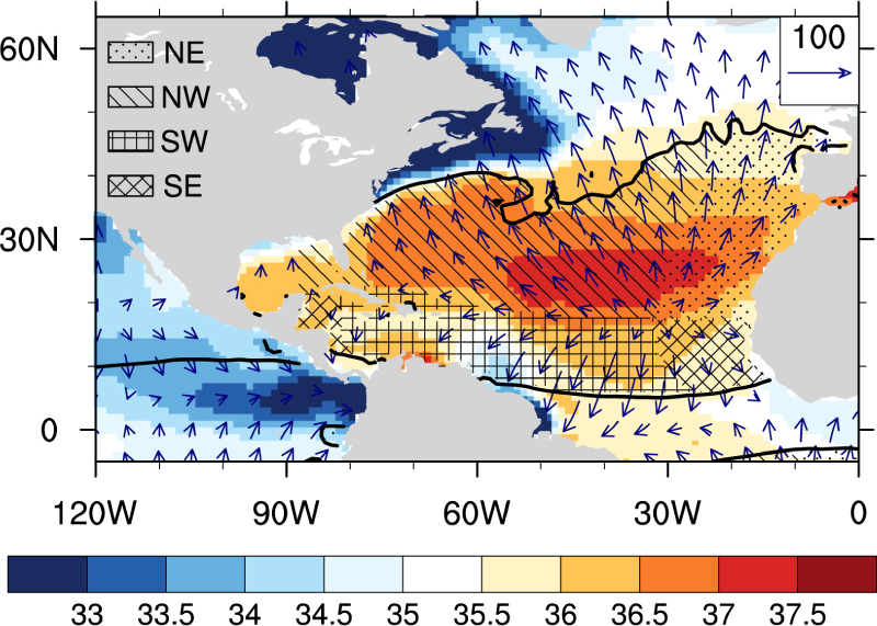 March-May climatology (1950–2009) of sea surface salinity (shaded), moisture flux divergence (thick contours) and the divergent component of moisture flux (vectors) over the North Atlantic