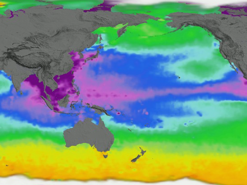 Global view of sea surface density