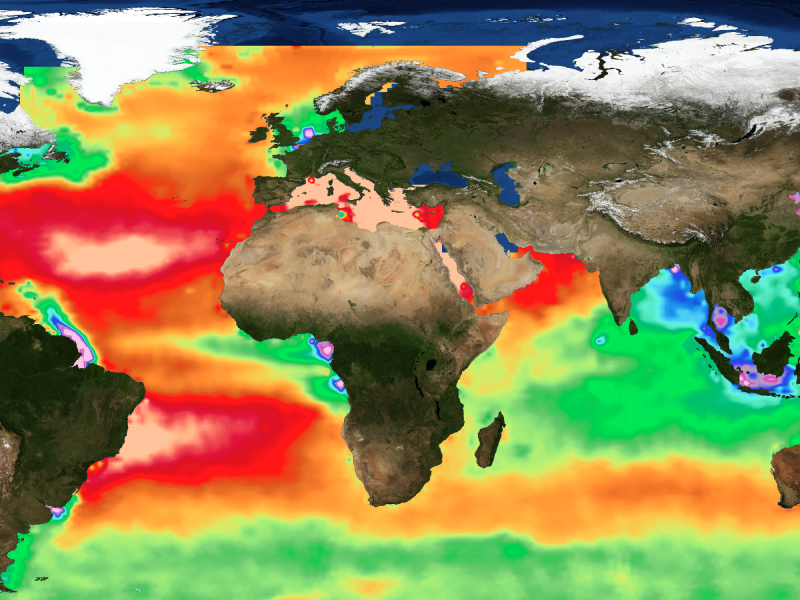 Global view of ocean alkalinity