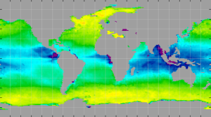 Sea surface density, February 2013