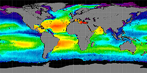 Global sea surface salinity, Summer 2014