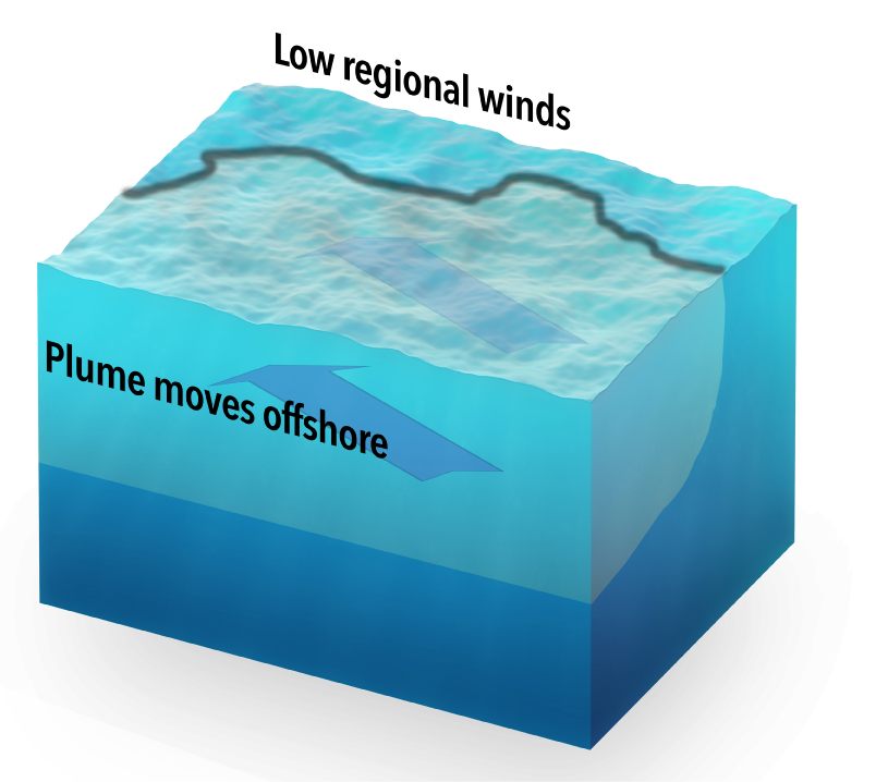 The large extent of the 2010 plume was helped by low winds in the region. These winds allowed the plume to move well offshore.