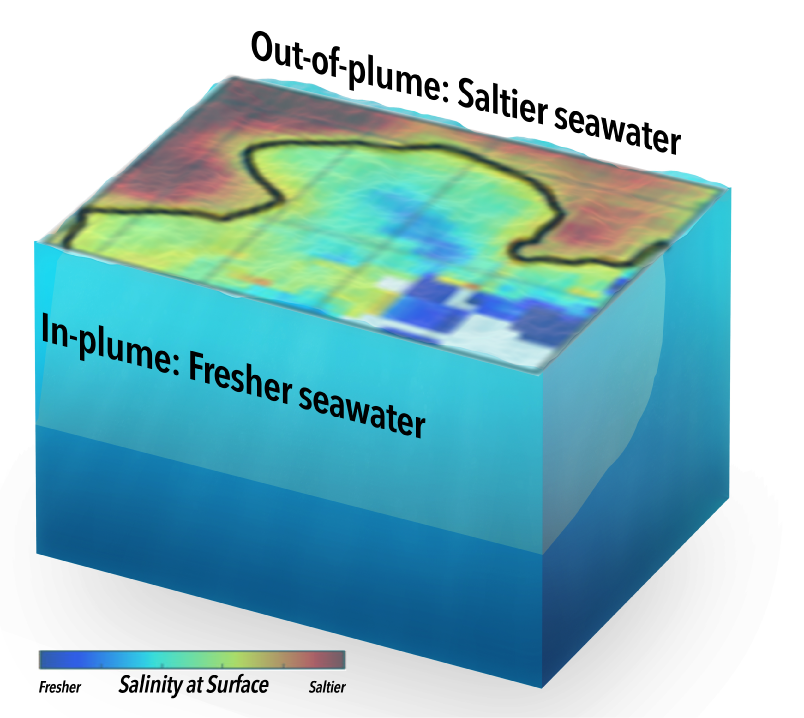 Defined by low salinity, the Amazon/Orinoco plume covers only 60% of the study area.