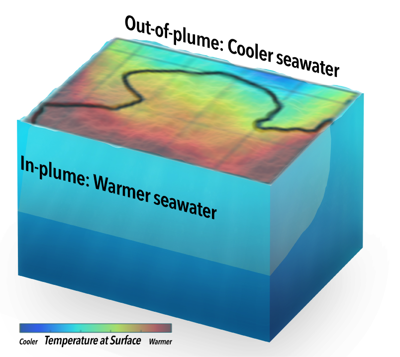 Defined by low salinity, the plume's water is warmer than average. Together, these properties help the plume